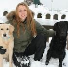 Jag arbetar som verksamhetsutvecklare inom  Hund & Häst över hela regionen Uppsala-Härnösand. Hör gärna av dig till mig om du är intresserad av studiecirklar eller utbildningar inom stall- och hästverksamhet eller något hundrelaterat, så som exempelvis lydnad, bruks, rallylydnad, jakt mm.